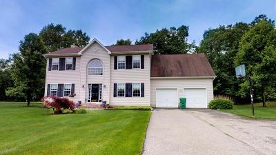 Jackson Single Family Home For Sale: 128 Don Connor Boulevard