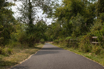 Residential Lots & Land For Sale: 985 Atlantic Avenue