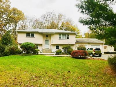 Howell Single Family Home For Sale: 406 Georgia Tavern Road