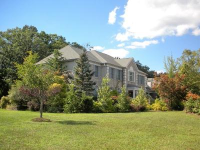 Freehold Single Family Home For Sale: 303 Brandon Boulevard