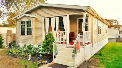 Eatontown Single Family Home For Sale: 313 Adams Street