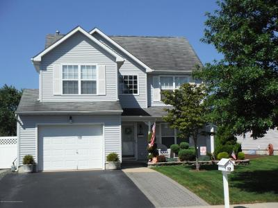 Ocean County Single Family Home For Sale: 12 Marlin Drive