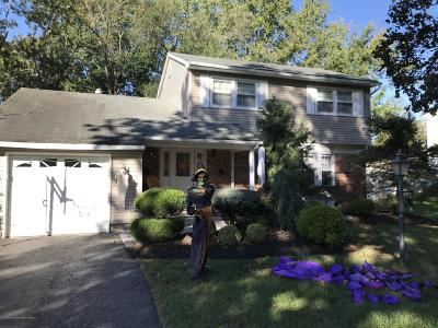 Monmouth County Single Family Home For Sale: 13 Chelsea Road