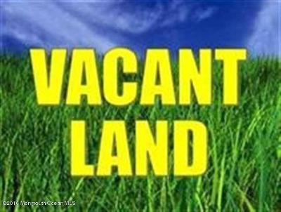 Holmdel Residential Lots & Land For Sale: 45 Bethany Road