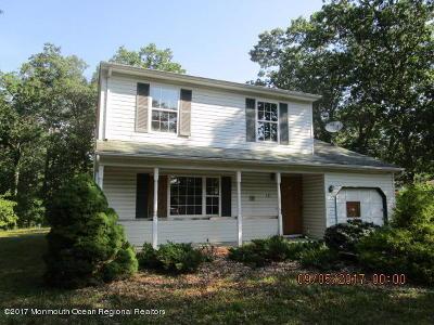 Toms River Single Family Home For Sale: 351 Audrey Avenue