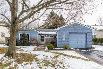 Freehold Single Family Home For Sale: 27 Long Road