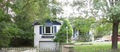 Ocean County Single Family Home For Sale: 319 Central Boulevard