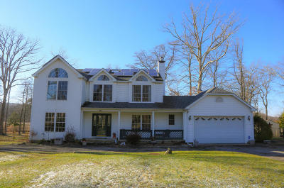 Howell Single Family Home For Sale: 288 Friendship Road