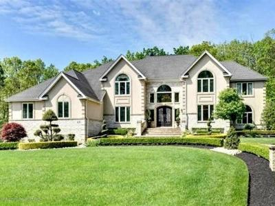 Freehold Single Family Home For Sale: 20 Partners Lane