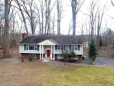 Holmdel Single Family Home For Sale: 4 Blue Hills Drive