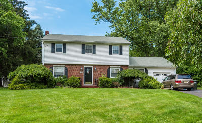 Freehold Single Family Home For Sale: 176 Colts Neck Road