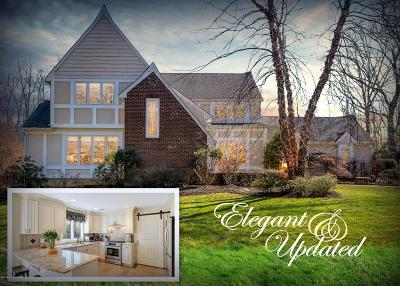 Colts Neck Single Family Home For Sale: 540 Marl Road