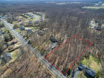 Monroe Residential Lots & Land For Sale: 225 Matchaponix Avenue