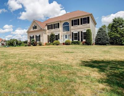 Freehold Single Family Home For Sale: 28 Stream Bank Drive
