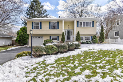Freehold Single Family Home Under Contract: 28 Willow Brook Road
