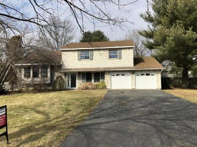 Freehold Single Family Home For Sale: 195 Sycamore Avenue