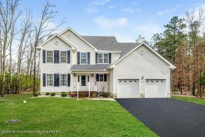 Jackson Single Family Home For Sale: 141 Park Avenue