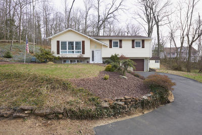 Atlantic Highlands Single Family Home For Sale: 2 North Avenue