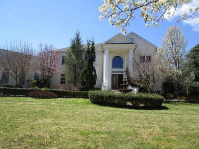 Howell Single Family Home For Sale: 12 Greentree Court