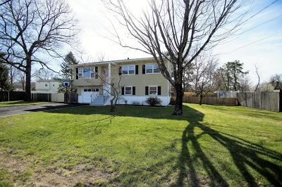 Brick Single Family Home For Sale: 357 Old Squan Road
