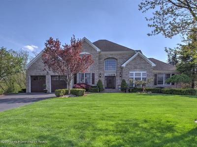 Freehold Single Family Home For Sale: 6 Tranquil Court