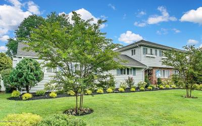 Spring Lake Single Family Home For Sale: 710 Shore Road