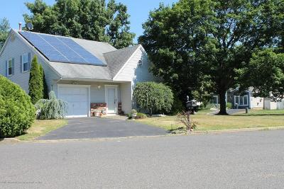 Freehold Single Family Home For Sale: 1 Long Road