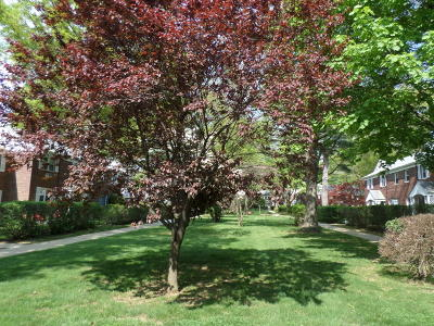 Red Bank Condo/Townhouse Under Contract: 147 Manor Drive
