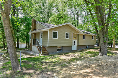 Single Family Home For Sale: 195 N County Line Road