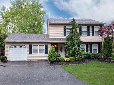 Howell Single Family Home For Sale: 10 Lampost Court