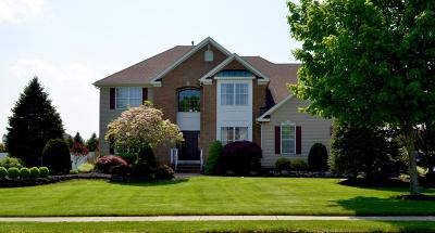 Freehold Single Family Home For Sale: 19 English Path
