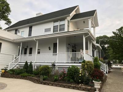 Island Heights Single Family Home For Sale: 17 Central Avenue