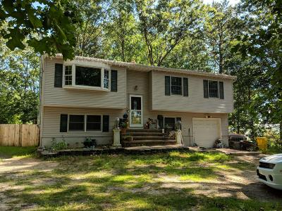 Ocean County Single Family Home For Sale: 763 Lakehurst Avenue