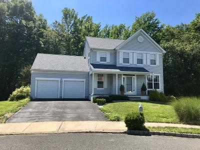 Howell Single Family Home For Sale: 21 Dayna Court