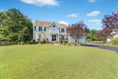 Jackson Single Family Home For Sale: 336 Nighthawk Lane
