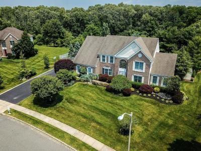 Freehold Single Family Home For Sale: 160 Round Hill Drive