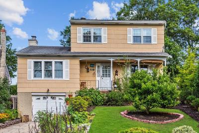 Point Pleasant Single Family Home For Sale: 518 Summit Drive