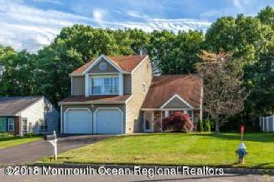 Single Family Home For Sale: 30 Mount Run