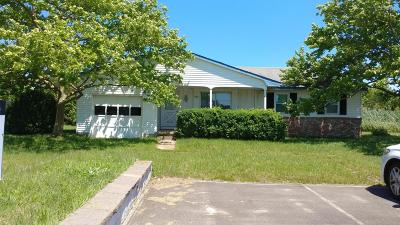 Single Family Home For Sale: 919 Radio Road