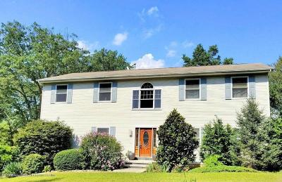 Millstone Single Family Home For Sale: 731 Perrineville Road