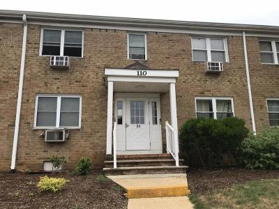 Freehold Condo/Townhouse For Sale: 110 Stonehurst Boulevard #B