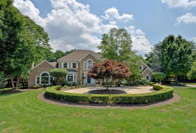 Colts Neck Single Family Home For Sale: 17 Liberty Knoll