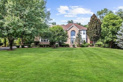Jackson Single Family Home For Sale: 18 Olena Drive