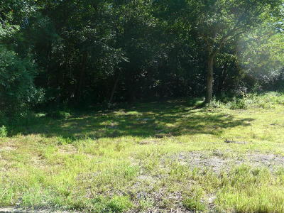 Residential Lots & Land For Sale: 17 Thomas Lane #A