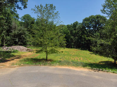 Residential Lots & Land For Sale: 18 Moonlight Drive