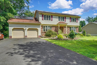 Monmouth County Single Family Home For Sale: 20 Sandpiper Drive #DR.