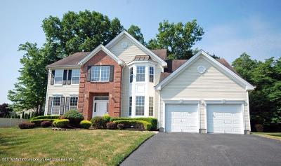 Jackson Single Family Home For Sale: 118 Picadilly Drive