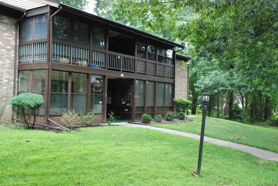 Covered Bridge Adult Community For Sale: 136 Amberly Drive #E