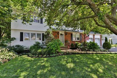 Avon-by-the-sea, Belmar, Bradley Beach, Brielle, Manasquan, Spring Lake, Spring Lake Heights Single Family Home For Sale: 909 Prospect Avenue