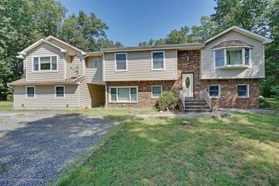 Howell Single Family Home For Sale: 435 Alexander Avenue